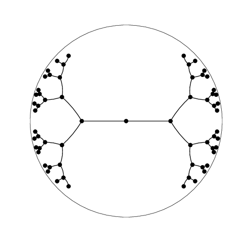 Binary tree embedding into the Poincaré disk